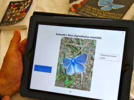 e-book over vlinders op Lesbos